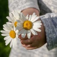 Was bedeutet Muttertag für dich - Es gibt viel Wertschätzung Müttern gegenüber